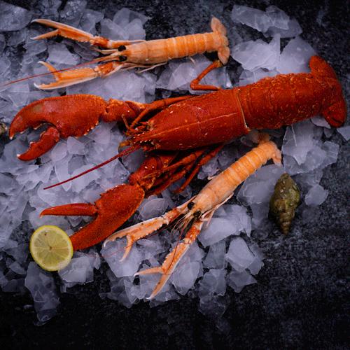 Commanndez crustacés chez la Poissonnerie Paon